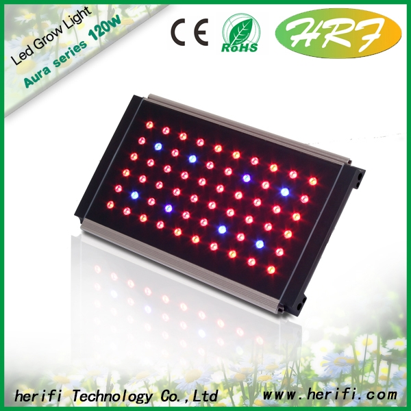 Herifi 60x3w AU001 hydroponic full spectrum LED grow Light