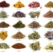 Herbal: All Kind Of Plant Seed, Herbal Seed, Ayurvedic Seed, Herbal Bark